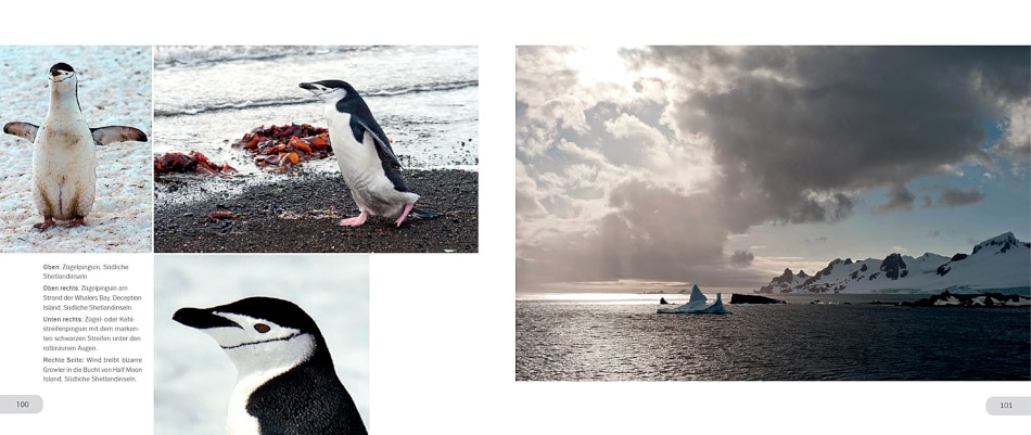 """Das Buch """"Reise in die Antarktis"""" kommt in zwei Teilen daher. Teil 1 illustriert die Reisen in die Antarktis und vermittelt mit vielen Bildern auch Wissenswertes über die Südpolarregion. Die Bilder stammen teilweise vom Autor, teilweise von externen Fotografen."""